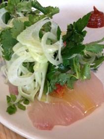 Raw Kingfish with harissa, blood orange & fennel