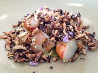 Barbecued Queensland prawns, avocado, soy cloud, puffed wild rice
