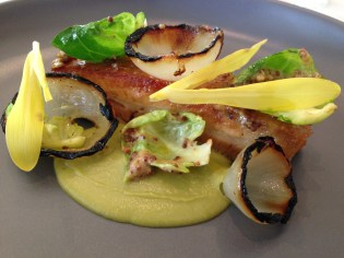 Western Plains pork belly with charred pickled onion and brussel sprout, cabbage puree and mustard dressing
