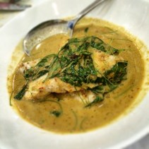Yellow curry of snapper