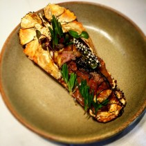 Whole Moreton Bay bug with roasted peanut curry butter, nori and finger limes
