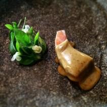 Salmon pastrami with fresh chopped beans, lemon basil, spiced emulsion, lemon gel and samphire