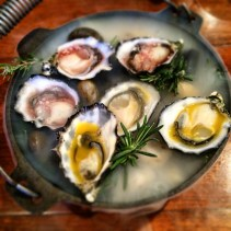 Oysters, passionfruit, rosemary