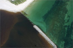 Freshwater pollution and near shore reef, St Lucie Inlet. (Photo JTL, 2013)
