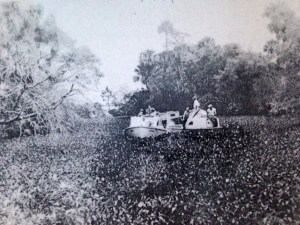 SLR filled with hyacinth, near Treasure Island. (Thurlow collection.)