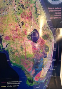 "The red line shows the designated ""Everglades."" As we can see humankind has filled a lot of it in. (SFWMD map, 2012.)"