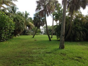 Large waterfront lot facing the Indian River Lagoon.