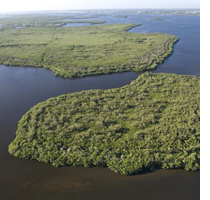 Central Indian River Lagoon (Photo Ed Lippisch, 2013)
