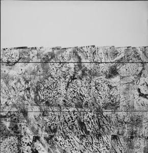 1940 DOA image of boarder between Martin and St Lucie Counties, where Port St Lucie sits  today.