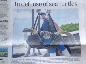 Front page of Stuart News 6-15-15.In Defense of Turtles a release story.