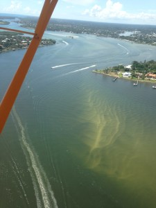 StLucie River, west side of Sewall's Point 2015. Point of Hell's Gate visible on to east/right. June 2015.