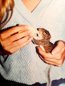 Sister, Jenny, with baby squirrel.