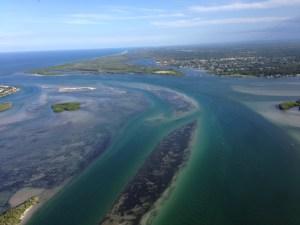 Sailfish Flats outskirts off Sewall's Point near St Lucie Inlet. 8-20-15. (Ed Lippisch)