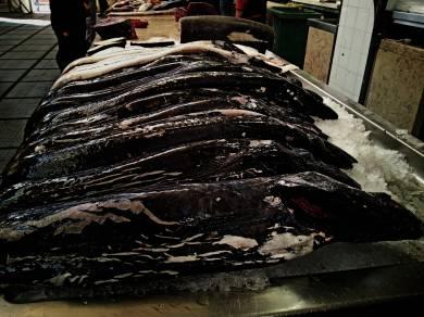 Espada czyli pałasz czarny ryba żyjąca na głębości ponad 1000 metrów pod powierzchnią oceanu. Rybacy z Câmara de Lobo wyspecjalizowali się w jej połowie. Potrawy przygotowywane z espady są lokalną specjalnością kulinarną