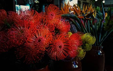 Kwiaty o wszelkich możliwych kolorach, kształtach i zapachach są oferowane przez tutejszych sprzedawców