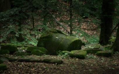 Wyspa na Łabędzich Stawach. Tu zostali pochowani dwaj pierwsi synowie Jana Henryka VI, którzy zmarli w 1802 roku