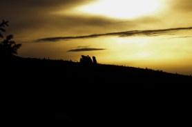 Dwieście lat temu Słonecznik służył mieszkańcom Borowic jako zegar. Był punktem służącym do obliczania mijającego czasu. Wystarczyło popatrzyć po której stronie Słonecznika jest słońce- 21:15 ?