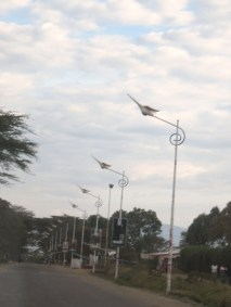 This is how you know you're on the right road to Lake Nakuru. Check out those lights!