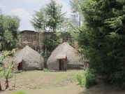 Traditional homes