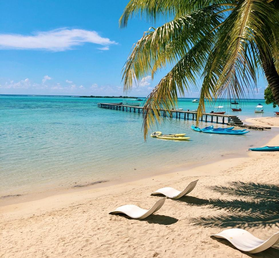 Pacific Paradise Fare