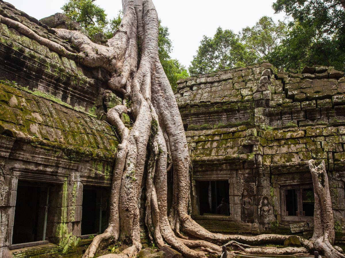 Cambodia, Ankor Watt