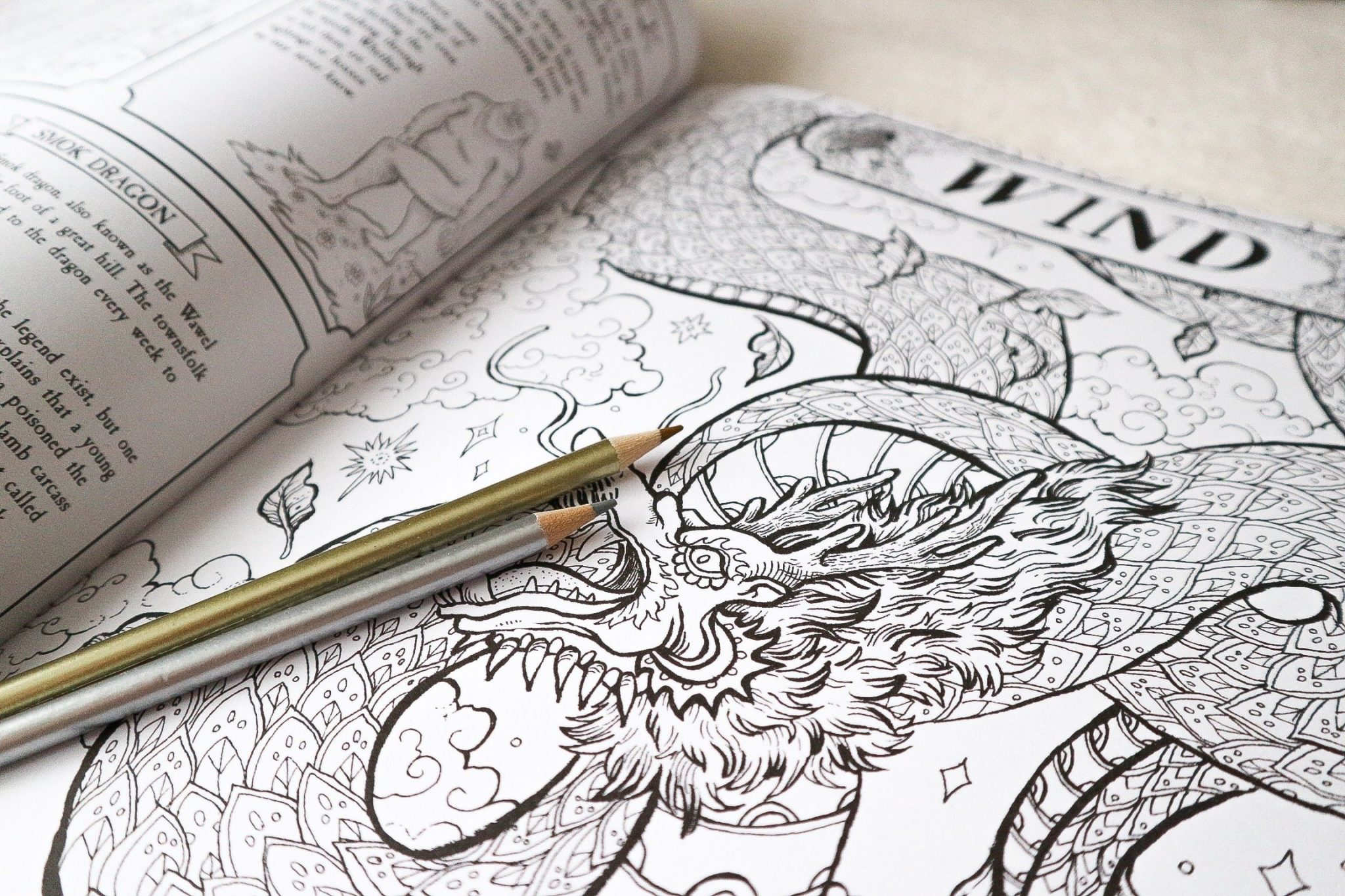 fantastic beasts and where to find them colouring book
