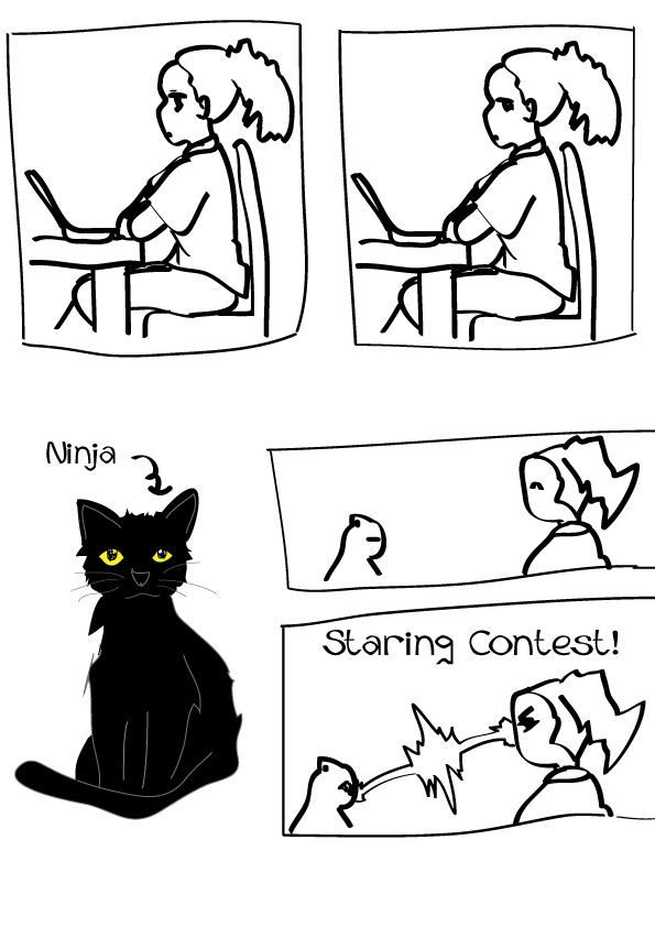 Ninja Mini Comic
