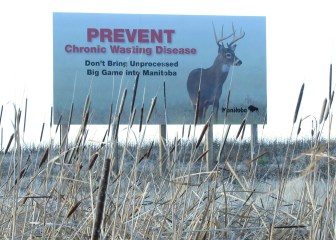 Provincial Billboard Sign