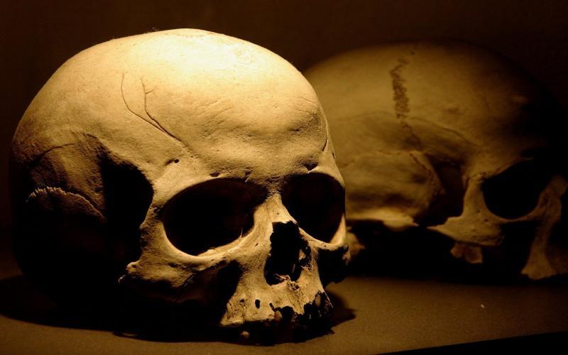 بني ملال…مختلٌّ عقليٌّ يسرقُ جمجمة من المقبرة ويعرضُها للبيع