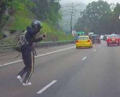 Ce motard n'a pas hésité à prendre tous les risques pour sauver ce chaton perdu au milieu d'une route
