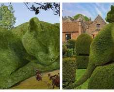 Pour honorer la mémoire de son chat décédé, il crée des buissons géants à son image