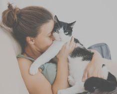 5 signes que vous aimez votre chat plus que les membres de votre famille