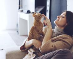 5 choses que chaque propriétaire de chat devrait avoir