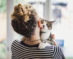 12 signes que votre chat vous aime vraiment