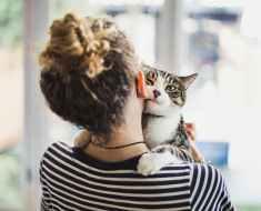 20 Signes que votre chat vous aime