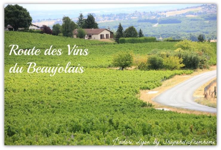 Route des vins du Beaujolais