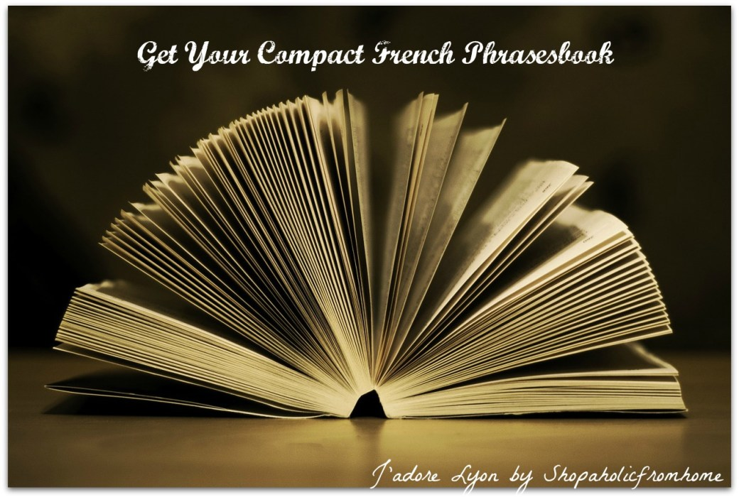 Get your Compact French Phrasesbook for Free