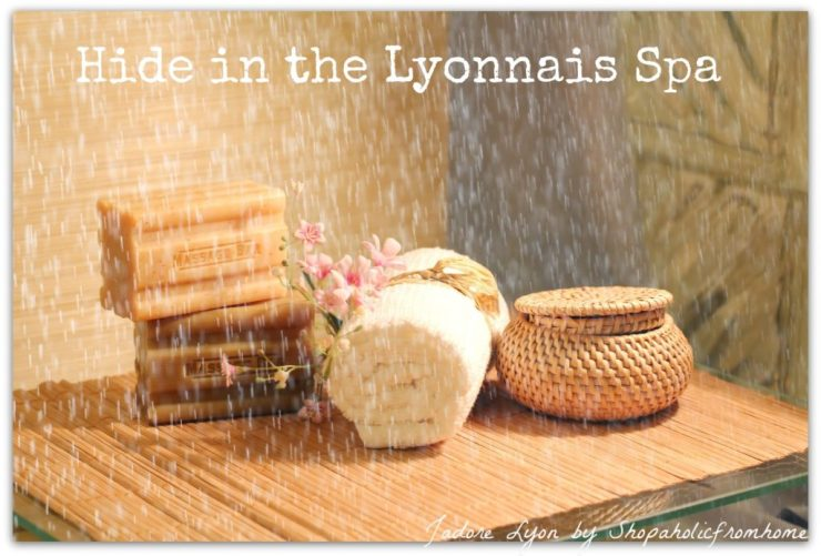 Hide in the Lyonnais Spa