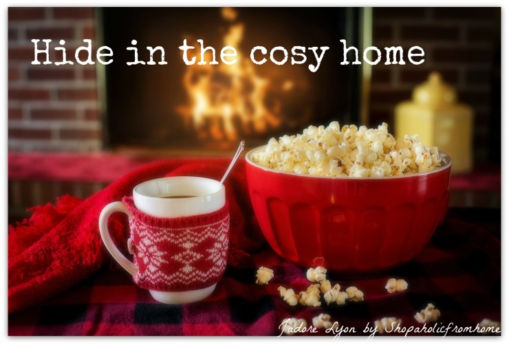 Hide in the cosy home
