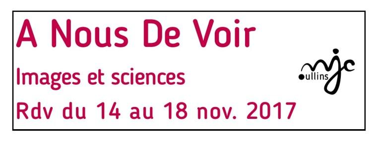 The Festival A Nous de Voir.
