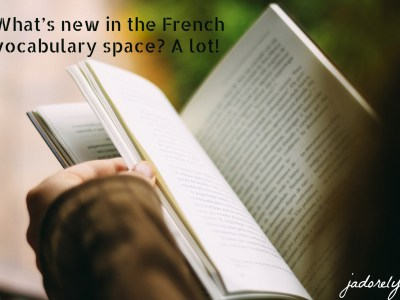 What's new in the French vocabulary space_ A lot!