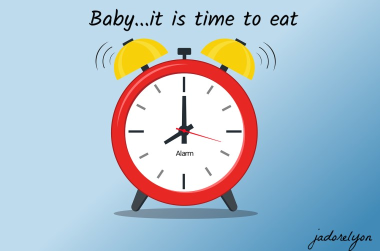 Different baby eating routines in France and Poland