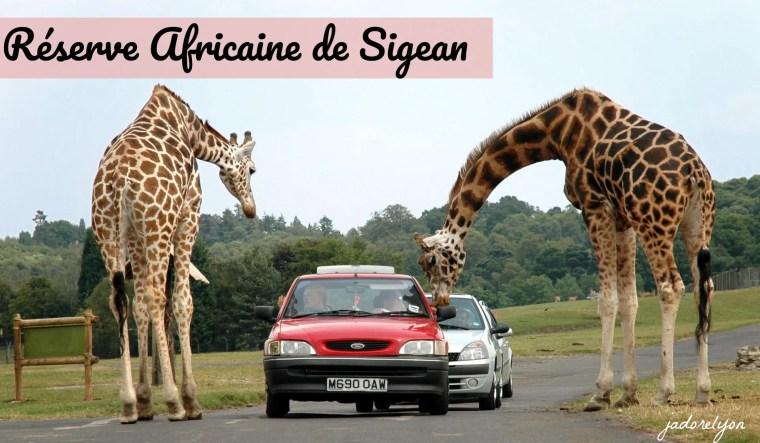 Réserve Africaine de Sigean(1)