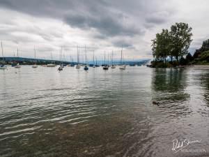 Jezioro Zuryskie
