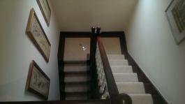 Runner - Stair Carpet