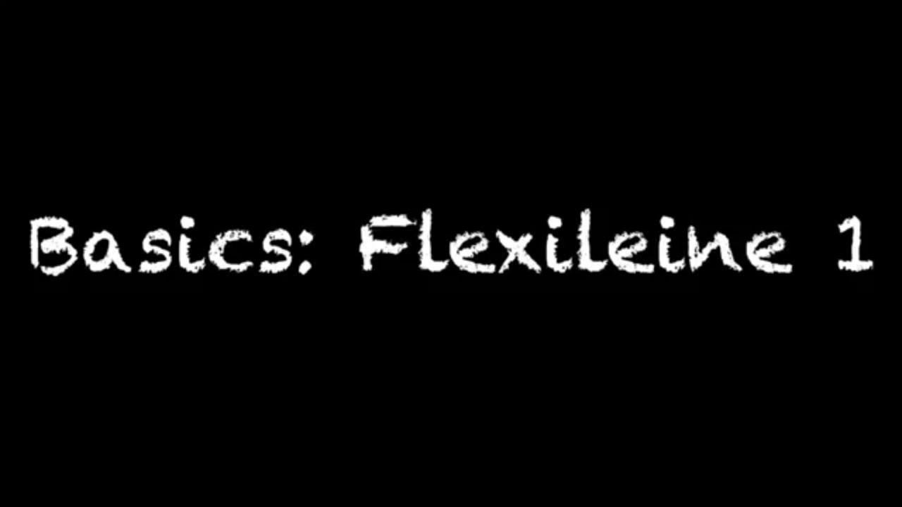 Basics Flexileine 1