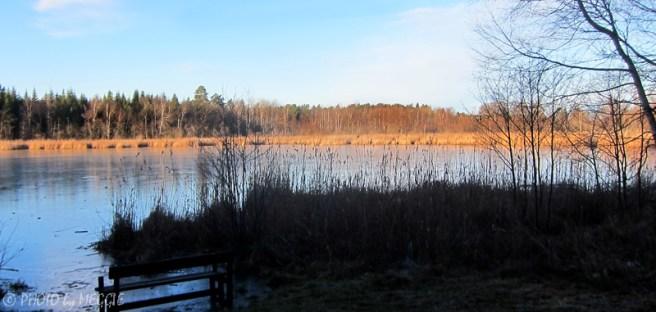Gullsjön