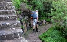 Vandring i Jardin Canario