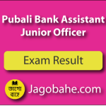 Pubali Bank Result