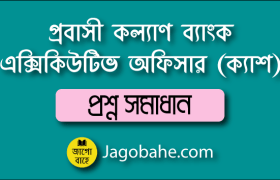 PKB Cash Officer Question Solution
